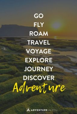 travel-quotes-move-484x720
