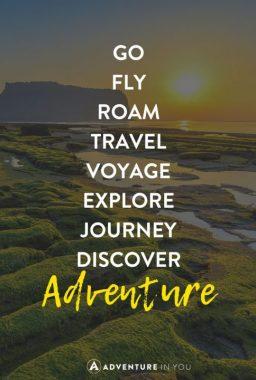travel-quotes-move-484x720